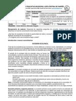 Guía #5 - Sucesion ecologica - Once (4-Julio-20).pdf