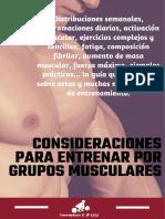 13.eBook-Consideraciones-para-entrenar-por-grupos-musculares.pdf