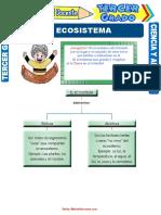 El-Ecosistema-para-Tercer-Grado-de-Primaria.doc