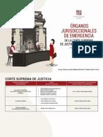 OPRGANOS+JURISDICCIONALES+DE+EMERGENCIA+PODER+JUDICIAL+ACTUALIZADO.pdf