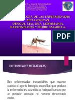 ENFERMEDADES METAXENICAS (1)