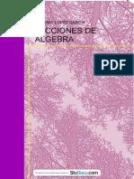 resumen-matematicas-i-lecciones-de-algebra.pdf