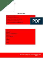 Big data marketingl.docx