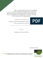 Memoire_FPL_ALLELA_ROVARIA_Christophe_César