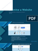 Examine a Website