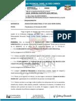 informe N° 065-2020 REQUERIMIENTO