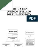 OBJETO Y BIEN JURÍDICO TUTELADO POR EL HÁBEAS