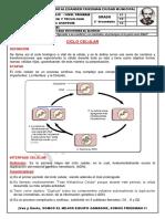 ANATOMÍA 2DO - 2 (1)