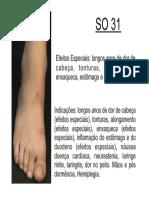 SO31.pdf