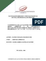 Conferencia de las Naciones Unidas sobre el Medio Ambiente y el Desarrollo, Declaracion de Rio sobre el Medio Ambiente y Desarrollo (Rio de Janeiro, 1992)-convertido