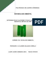Práctica 1 - Determinación de Coliformes - Microbiología Ambiental (2)