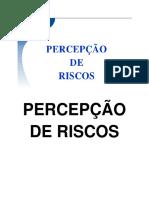 2º_Percepção_de_riscos.pdf_(recuperado)