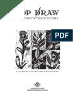 topdraw.pdf