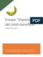 ensayo costo-beneficio