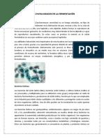 MICROORGANISMOS INVOLUCRADOS EN LA FERMENTACIÓN