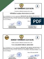certificado de capacitacion interna (8).pdf