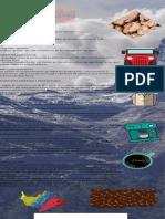infografia cafe colombiano.pdf