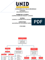 ORGANIZADOR GRAFICO_CAP1