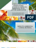 DIAPOSITIVAS IMPACTO AMBIENTAL