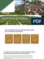 RESTAURACIÓN ECOLÓGICA (RE) CON ENFOQUE DE PAISAJE EN EL PERÚ
