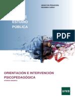 Orientación e intervención Psicopedagógica Guia_63022072_2021