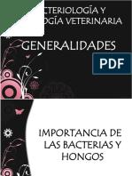 bacter morfologia