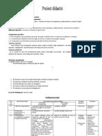 lectie_economie1.docx