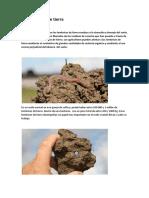 Lombrices.pdf