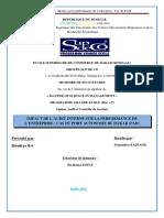 memoire impact de l'audit interne sur la performance .pdf