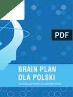 Raport Brain Plan