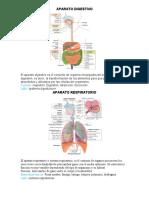 aparatos,sistemas y sentidos del cuerpo humano.docx