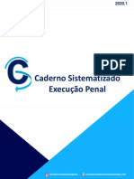 CADERNO DE EXECUÇÃO PENAL 2020