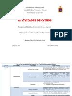 30_ACTIVIDADES_DE_SISTEMA_DE_PRODUCCION_DE_OVINOS__1 (1).docx