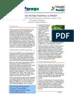 Alfalfa híbrida