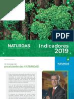 INDICADORES - NATURGAS