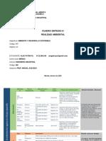 Cuadro Sintesis #1 Alex Patruyo.pdf
