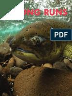 Summer 2020 Strong Runs Newsletter Native Fish Society