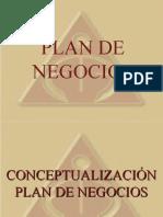 PRESENTACION CONCEPTUAL PLAN DE NEGOCIOS