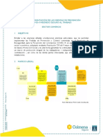 5- GUIA PROTOCOLO BIOSEGURIDAD COMERCIO.pdf