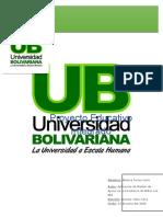 Proyecto Educativo Monica.docx