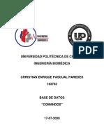 183742_Comandos.pdf