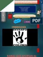 Exposición - Psicología Criminal