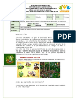 GUIA 5  DE BIOLOGIA  7
