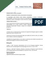 Guía de TP 3