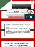 LEY Nro. 30364 LAS MEDIDAS DE PROTECCIÓN.pptx