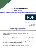 Bio606-Lab 5-SDS-PAGE