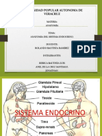 Glándula Tiroides exposicion anatomia 1.pptx