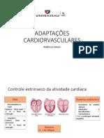 adaptações cardiorespiratórias e hormonais