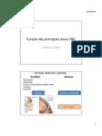 aula função principais áreas.pdf