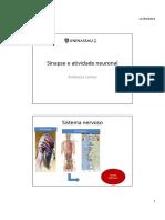 aula sinapse.pdf